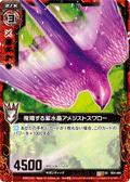 飞翔的紫水晶 紫晶燕