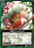 壳茸 蘑菇蜗牛
