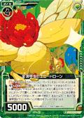 金满甲虫 玫瑰甲虫
