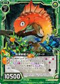 枯荣蜥蜴 橙子蜥蜴